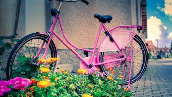 Das Hollandrad - Fragen und Antworten rund um den Rad-Klassiker